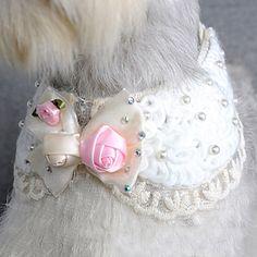 90 melhores imagens de Tetela Pet - Modelos   Doggies, Pet clothes e ... 9e34ebee87