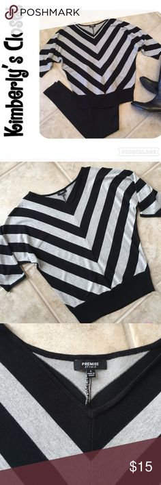 🛍PREMISE STUDIO🛍 sweater PREMISE STUDIO black and gray chevron sweater.  Super soft - 78% rayon, 22% nylon.  Hand wash.  Dolman sleeves.  Rubbed at waistline.  Only worn a couple of times - excellent condition. Premise Studio Sweaters V-Necks