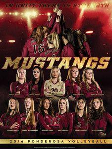 http   www.mattdanphoto.com Team-Photography Sport- b31af9bd88
