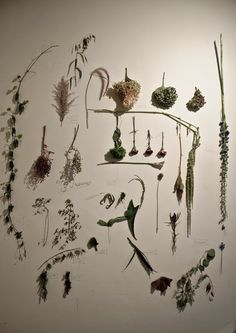 PORTFOLIO / GREEN FINGERS is a creative company which proposes an independent style of greens. Managed by the plant artist Satoshi Kawamoto. Creative Company, Interior Garden, East Village, Garden Projects, Flower Arrangements, Floral Design, Lily, House Design, Display