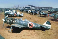 1161x781. Nakajima ki-84 HAYATE, Ki-43 HAYABUSA.