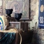 Merida's cubs are an interactive part of the meet-and-greet