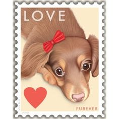 Doxie Stamp