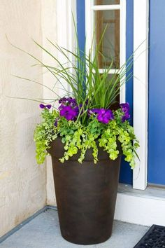 Front Door Planter Ideas - Best Front Door Flower Pots and Porch Planters: Flower Pot Ideas and Planter Designs For Your Front Porch Front Porch Plants, Front Porch Flowers, Front Door Planters, Porch Planter, Front Porches, Front Porch Garden, Planter Pots, Large Outdoor Planters, Tall Planters