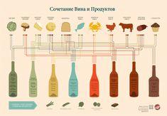 5 советов как подобрать вино к блюду | Гастрономический туризм