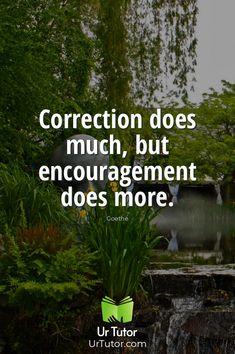 Education Qoutes, Find A Tutor, Online Tutoring, Encouragement