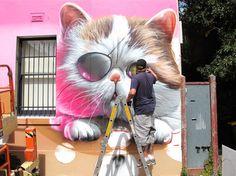 Smug One - Cat
