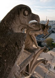 Grotesques Overlooking Paris | Flickr - Photo Sharing! Grotesques Overlooking Paris  It's quite a thrill to climb to the top of Notre Dame's south tower (after a fairly long queue) to take in the entire city of Paris, not to mention close-up views of the many gargoyles (fancy rain spouts) and grotesques (ornamental statues) and other architectural features along the way.