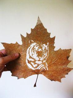 Beautifully Intricate Cut Leaf Art by Omid Asadi, art, sculpture, leaves, leaf art