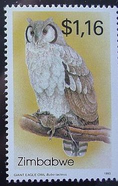 Verreaux's Eagle-Owl stamps - mainly images - gallery format World Birds, Going Postal, Owl Bird, Penny Black, Mail Art, Stamp Collecting, Postage Stamps, Giant Eagle, Envelope Art