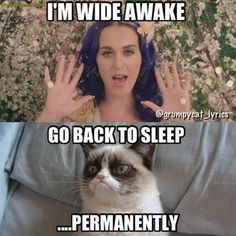 hahahaha yes katy perry i'm on Taylor Swift's side :) Please comment if you are the same