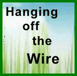 Hanging off the Wire Review