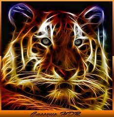 Electric tiger (Fractalius graphic)
