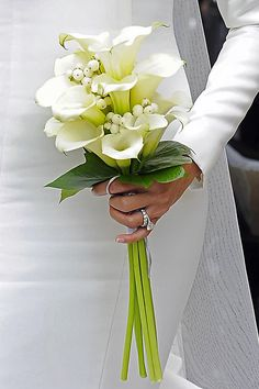 Few fresh cut flowers offer the elegance and versatility of the calla lily. If you are designing your own wedding bouquet, centerpieces or arrangements, the calla lily will provide all of the style… Calla Lily Bouquet, Hand Bouquet, Calla Lillies, White Tulip Bouquet, Calla Lily Boutonniere, White Flowers, Lily Wedding, Floral Wedding, Wedding Tips