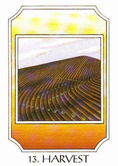 13. Harvest (Jera) - Rune Cards by Ralph Blum Illustrated by Jane Walmsley