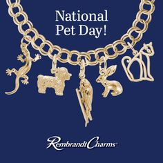 Go wild with our Rembrandt Charms Animals Collection. Start their Charm Story today! National Pet Day, Parrot Pet, Pet Cage, Kids Jewelry, Pet Toys, Pet Birds, Animal Pictures, Dog Cat, Charms