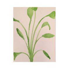 Aquarel plant