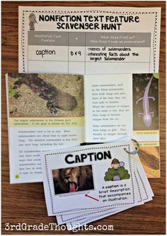 "INFORMATIONAL TEXT 2 Feature Scavenger Hunt Teaching nonfiction text features using a ""scavenger hunt""-style game keeps it engaging and encourages students to think of how and what the text feature teaches them. Library Lessons, Reading Lessons, Reading Skills, Teaching Reading, Reading Groups, Guided Reading, Reading Tips, Reading Intervention, Teaching Spanish"