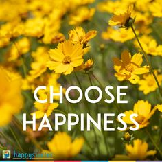 #HappyHumpDay #ChooseHappines #DailyInspiration #flowers