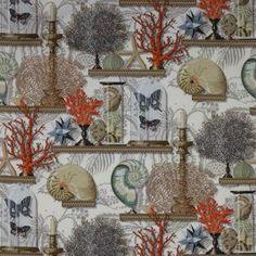 Le tissu Le Cabinet de Curiosites de Canovas : Des collections de coraux, coquillages et papillons posés sur des étagères constituent le thème de ce b...