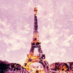 paris lomography