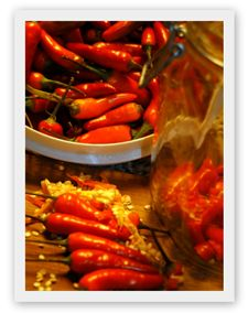 Lots of great info on fermenting peppers whole. sliced or pepper mash.