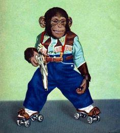 Rollerskating Chimp