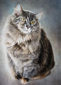 """Dusty""  Watercolor  Kimberly Meuse Watercolor Paintings Of Animals, Watercolor Cat, Cat Paintings, Dog Cat, Pretty Cats, Beautiful Cats, Animal Drawings, Pet Portraits, Gatos"