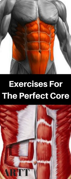 Exercises ForThe Perfect Core - The Importance of Core Fitness