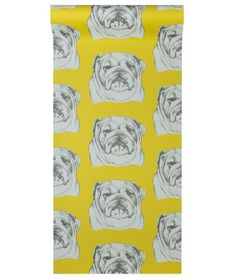 """""""Make a feature wall with this colourful, charming, hand drawn Bulldog print wallpaper. Inspired by Amy's love of dogs and sixties Pop Art."""" Width Roll length Repeat Paste the wall wallpaper. Bulldog Wallpaper, Print Wallpaper, Pop Art, How To Draw Hands, Dogs, Hand Drawn, Mustard, Inspiration, Color"""