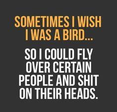 be a bird