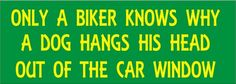 - Signs Seen... (General - Biker and Motorcycle Humor and Jokes) (Page: 2) - CycleFish