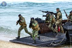 Portuguese Navy Fuzileiros (Marines) together with Royal Navy Marines in Exercise Trident Juncture 2015.
