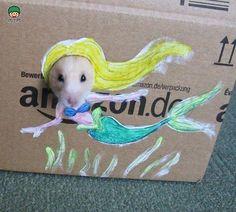 Diy | Crea ropa divertida para tu hamster