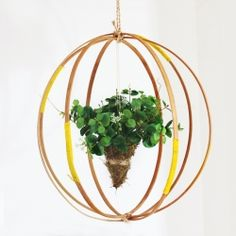 Create your own hanging plant and make it even more interesting using embroidery hoops.
