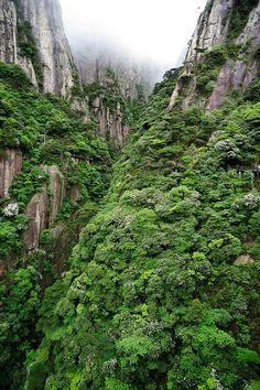 Sanqing Mountain, Jiangxi Province, China