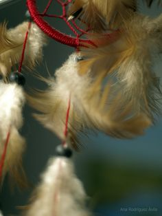 Dreamcatcher by Jill_Bioskop, via Flickr