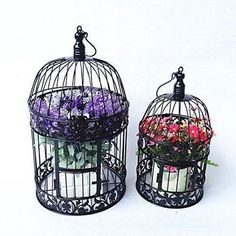Bird Cages Small