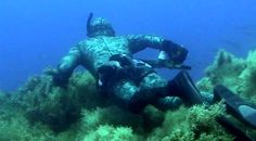 STICKY: GREAT shallow water spearfishing tips