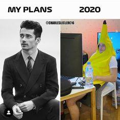 Really Funny Memes, Stupid Funny Memes, Funny Laugh, Hilarious, Car Guy Memes, Car Jokes, Funny Images, Funny Photos, F1 Wallpaper Hd