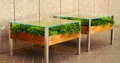 The Living Table, a coffee table with a planter designed by Habitat Horticulture.  also: http://design-milk.com/the-living-table-by-habitat-horticulture-small-space-planter/