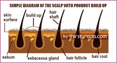 One way to ensure your hair grows long and healthy is to go a step further than shampooing by doing a scalp detox treatment. At times we forget that our scalp is living and breathing, and the hair strands are dead. Hair Growth Cycle, Hair Growth Tips, Natural Hair Care, Natural Hair Styles, Grow Long Hair, Grow Hair, Monat Hair, Hair Scalp, Hair Remedies