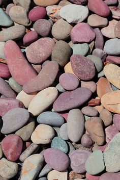 River Rocks Faith would be in Heaven with these