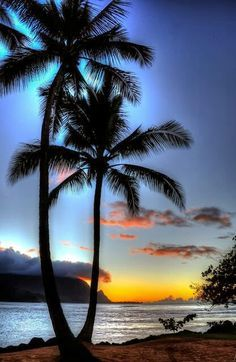 HDR Sunset next to the palm trees on the beach at Hanalei Bay Hawaii sunset Beautiful Sunset, Beautiful Beaches, Beautiful World, Beautiful Scenery, Hanalei Bay, Belle Photo, Pretty Pictures, Amazing Photos, Beautiful Landscapes