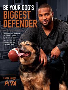 NFL Star Lance Briggs Says, 'Be Your Dog's Biggest Defender'