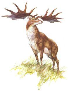 Prehistoric World, Prehistoric Animals, Cro Magnon, Early Humans, Age, Flora And Fauna, Fossils, Mammals, Moose Art