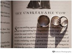 Charisse and Chris - Harry Potter Themed Wedding |