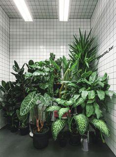 도시라는 거대한 정글을 해매이는 스마트 애니멀; 채식주의자를 위한 야채쥬스 바. 도시;그리드와 백색 타일의 그리드는 그렇게 짝을 이룹니다. Artem Vakhrin and Katya Zuieva (architectural studio AKZ Architectura, Kiev, Ukraine) were requested to design a new veggie bar. The client, Yulia Savlepova, got strong vision on the conception of future place. This has created a perfect tandem in which everyone..