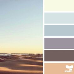 today's inspiration image for { color horizon } is by @in_somnia_ ... thank you, Judith, for another breathtaking #SeedsColor image share!