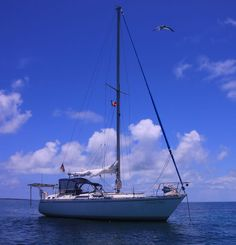 Our Moody 346 anchored near Pawpaw Rock in the Little Bahama Bank for some snorkeling.